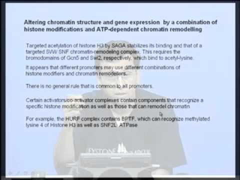 Mod-03 Lec-10 Chromatin remodelling & gene regulation
