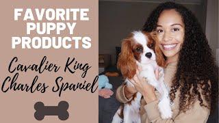 Favorite Puppy Products & Essentials | Cavalier King Charles Spaniel