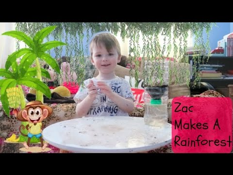 Weekend Box Club - Zac Makes a Rainforest - LINK FOR A FREE BOX