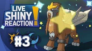SHINY ENTEI IN ULTRA SPACE! Pokemon Ultra Sun and Moon! Shiny Living Dex #244