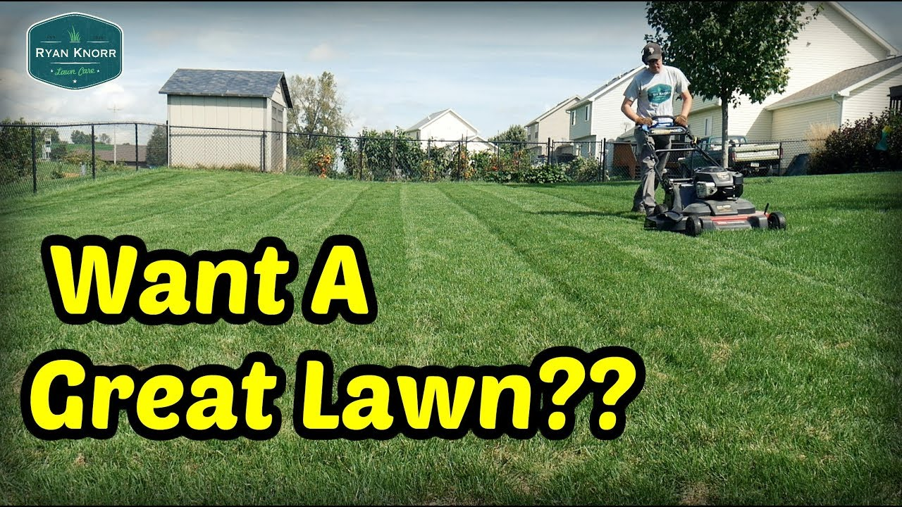 Make YOUR LAWN GREAT This Fall! - Fall Lawn Care Program ...