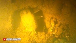 Открытие сезона подводной охоты 2020 Жесть сколько налимов Налим Подводная охота обучающее видео