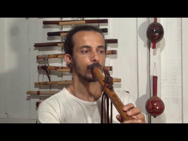 Flauta Nativa F#