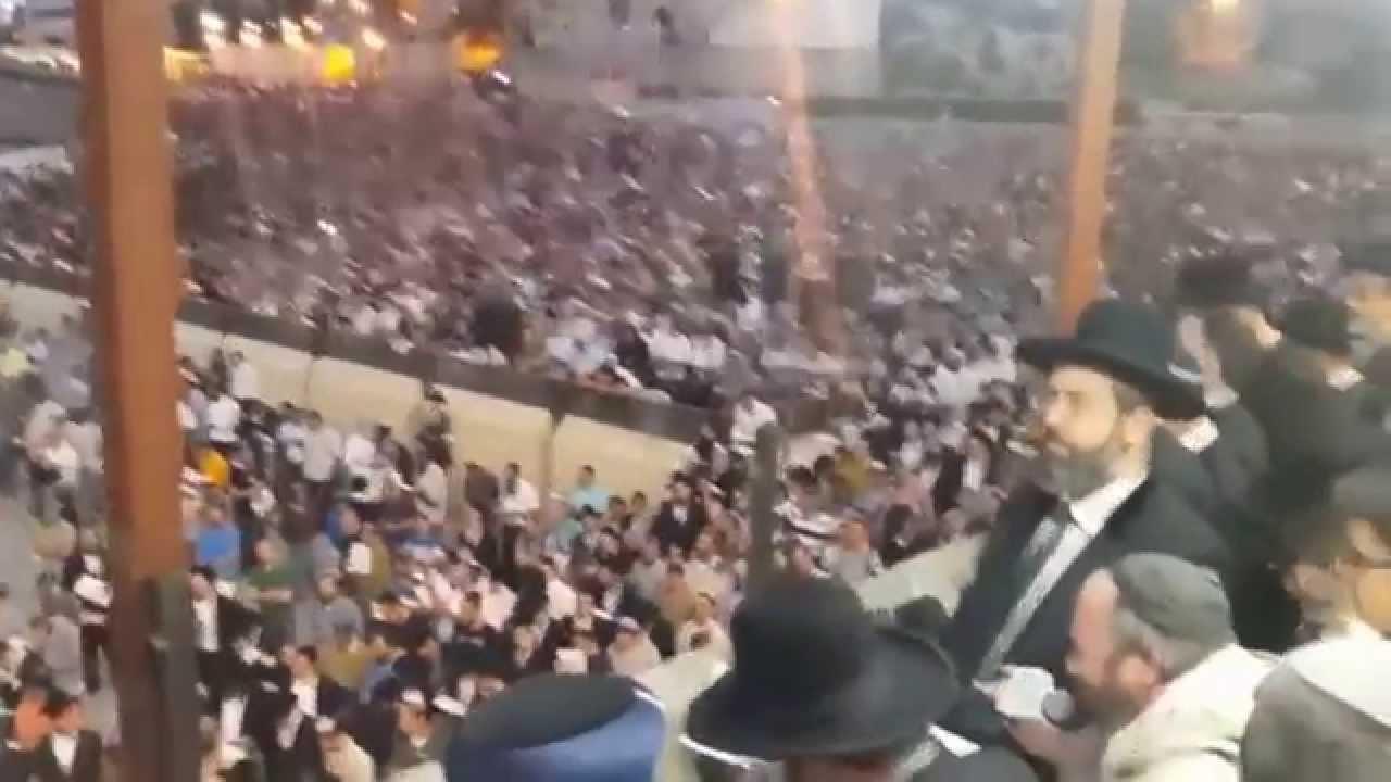 אברהם פריד - מכניסי רחמים בהופעה