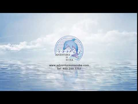 Snorkel Gear Calgary