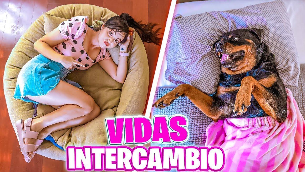 Download INTERCAMBIO VIDA CON MI PERRO POR 1 DIA 😱 CAMBIO DE VIDAS por 24 HORAS 🔥 SandraCiresArt