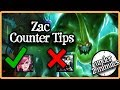 How Zac Works (Under 2 Minutes)