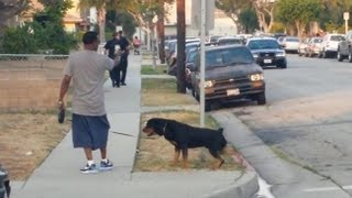 California cops shoot rottweiler dead in front of owner Leon Rosby!