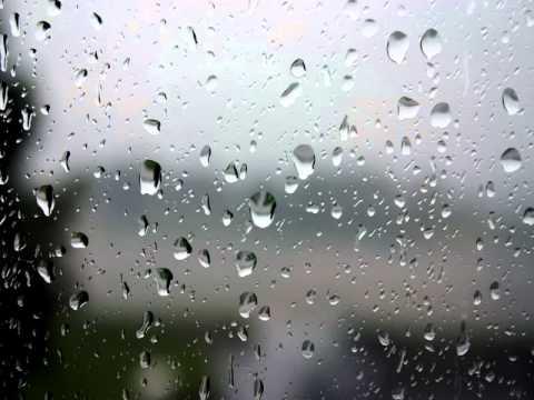 ฝน เบิร์ดกะฮาร์ท
