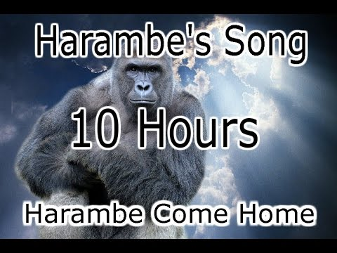Harambe's Song (Harambe Come Home) - Cyanacide 10 HOURS
