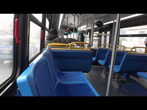 60 Beeline Sunday Bus Schedule