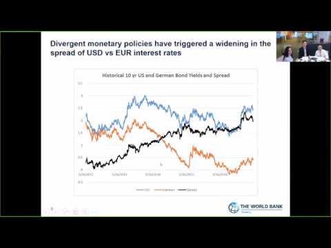 Webinar: Choosing between USD and EUR-denominated bonds