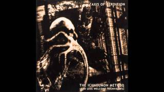 The Axis of Perdition - Disturbance in the Perpetual Screen