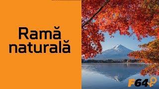 Lecția de compoziție - Rama naturală (ep.5)