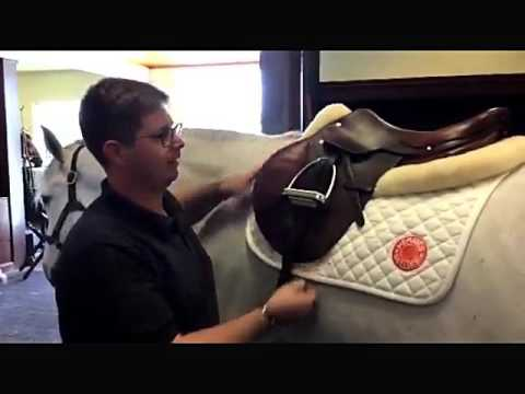Saddle Fitting Tips From James Sardelli Of Hermes