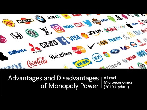 Advantages and Disadvantages of Monopoly Power