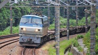 JR東海道本線金谷駅東側にて9:30~11:10までの貨物4本他 2018/07/18 thumbnail