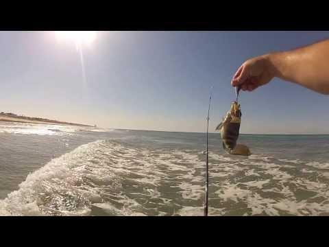 Shore Fishing Puerto Penasco (Rocky Point) Mexico June 2013 GoPro Chesty
