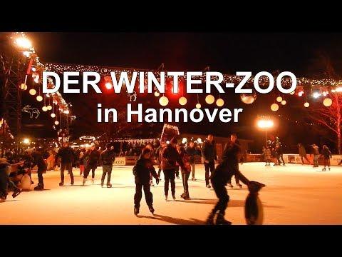 Ein Besuch im stimmungsvollen Winter-Zoo in Hannover