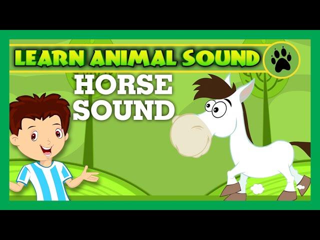 Animal Sound for Children | Horse Sound, Duck Sound, Cow Sound | Kids Hut
