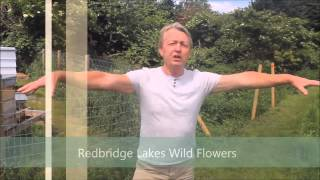 Redbridge Lakes Tour Guide 2015