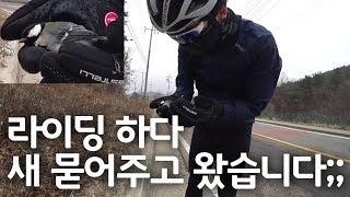 하루짜리 강화도 자전거여행