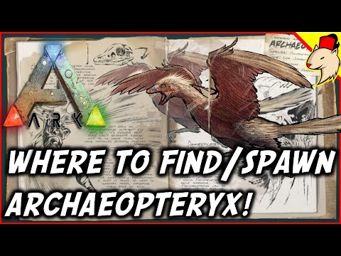 Ark how to find archa archaeopteryx summon ark survival evolved ark how to find archa archaeopteryx summon ark survival evolved spotlight malvernweather Image collections