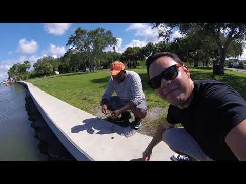 Treasure Island Florida Fishing