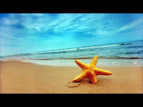 Relaxing Sea Waves Music Ringtone   Free Ringtones Downloads
