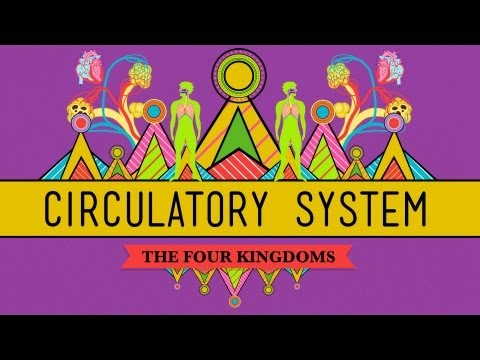 Circulatory & Respiratory Systems - CrashCourse Biology #27