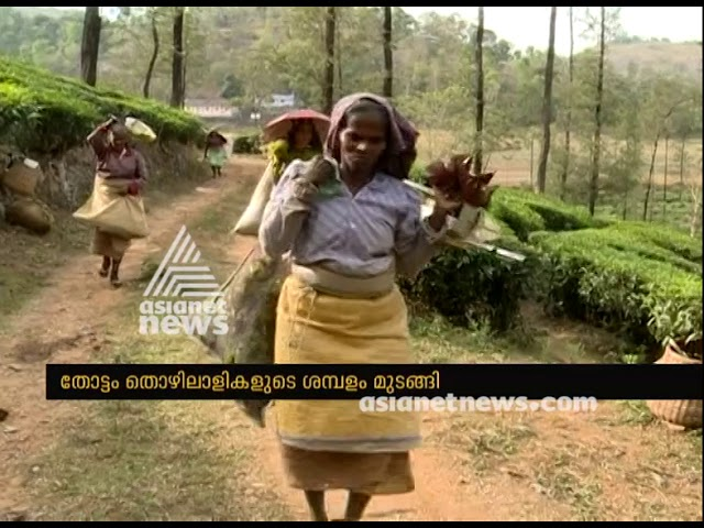 Plantation workers not getting salary and wages even after SC verdict