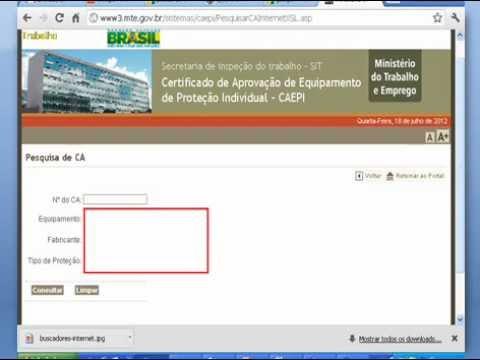 b0e04dbbd6d56 Como consultar o CA do EPI. Nestor W Neto - Segurança do Trabalho
