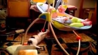Cute Cat Shake A Shaker Baby Cradle !!