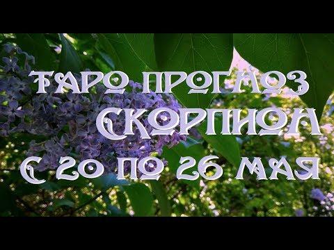 Скорпион. Таро прогноз на неделю с 20 по 26 мая 2019 г. Онлайн гадание.