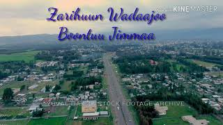 Old oromo music Zarihun Wadaajoo