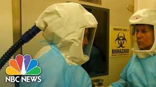 Scientist Speaks Out About Coronavirus Origin: Exclusive | NBC Nightly News