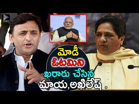 Mayawati And Akilesh Finalized Modis Defeat || Political News || TFC News