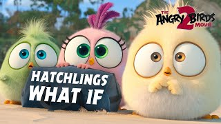 The Angry Birds Movie 2 | Hatchlings What If