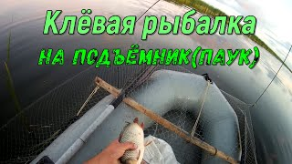 Удачная рыбалка на паук подъемник Сазан дуреет Отличная рыбалка