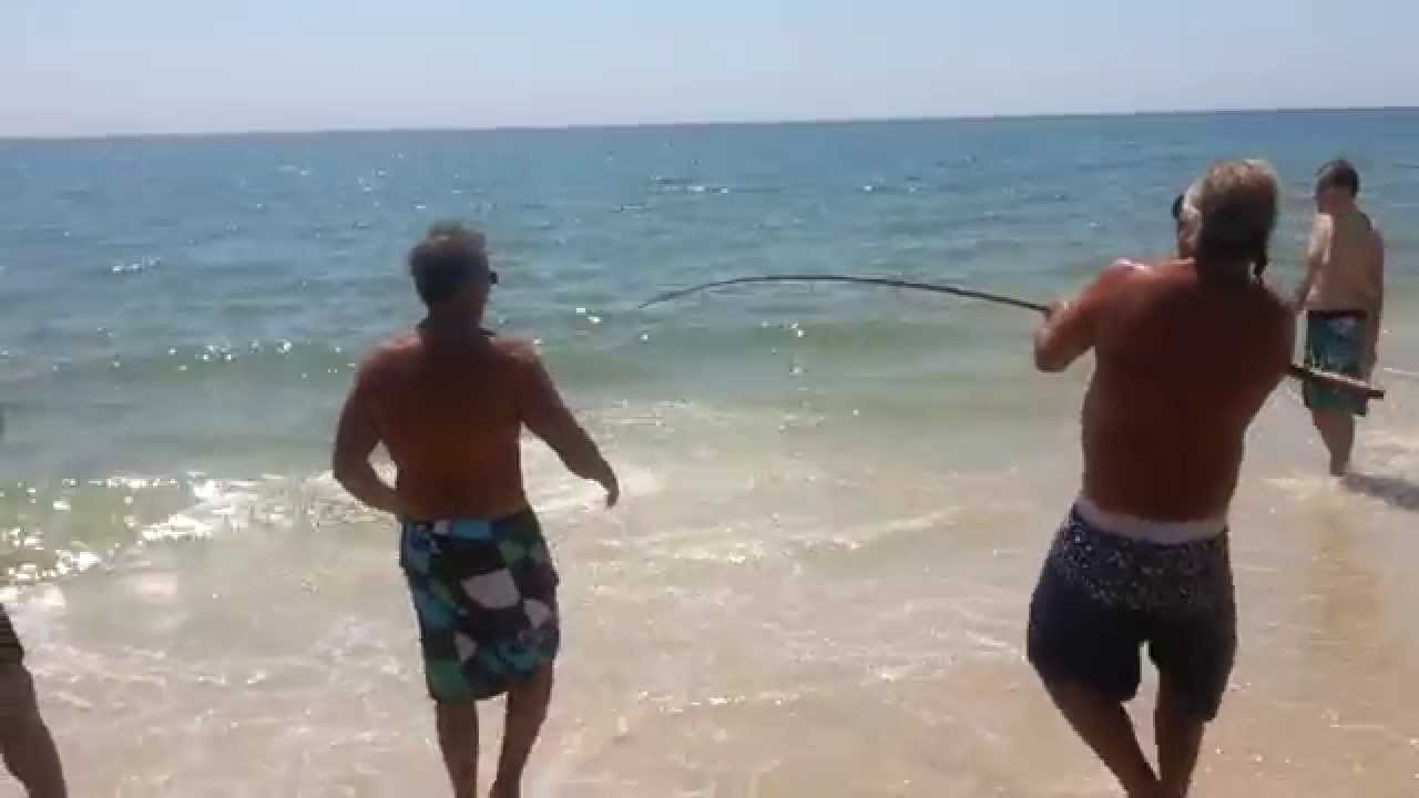 How To Catch A Shark From The Beach Fire Island New York Kismet Robert Moses State Park