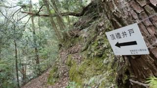 頂礼井戸(三重県亀山市)・・・2017/04