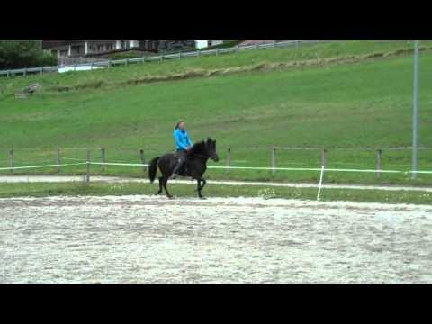 Smyrna von Haselbach 10 Wochen Training