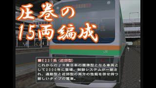 電車でGO! プロフェッショナル2 E231系 快速 (湘南新宿ライン)
