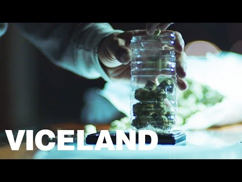 A Tale of Two Dealers: Washington, DC (WEEDIQUETTE - Half Baked Clip)