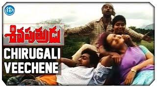 Siva Putrudu Movie Songs - Chirugali Veechane Video Song   Vikram   Suriya    Laila    Sangeetha