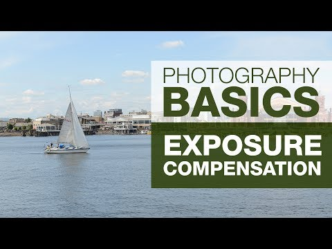 PHOTOGRAPHY BASICS | EXPOSURE COMPENSATION