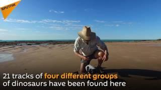 أكبر أثر لقدم ديناصور في العالم تظهر على سواحل أسترالية نائية