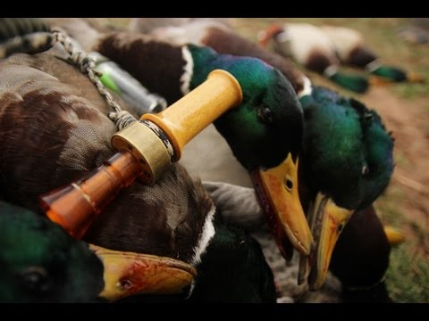Duck and Goose Hunting: Mallards, Specks, Canada Geese, and Snow Geese – Fowled Reality Season 2