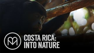 Costa Rica: Into Nature