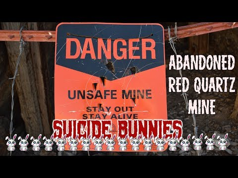 SUICIDE BUNNIES! - Mine Exploring near Tonapah Nevada - Ryan Lewis Videos